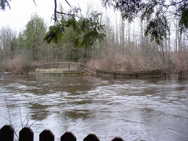 Jordon Lamprey Weir Before Removal