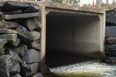 Blackstone Brook Culvert Replacement Before